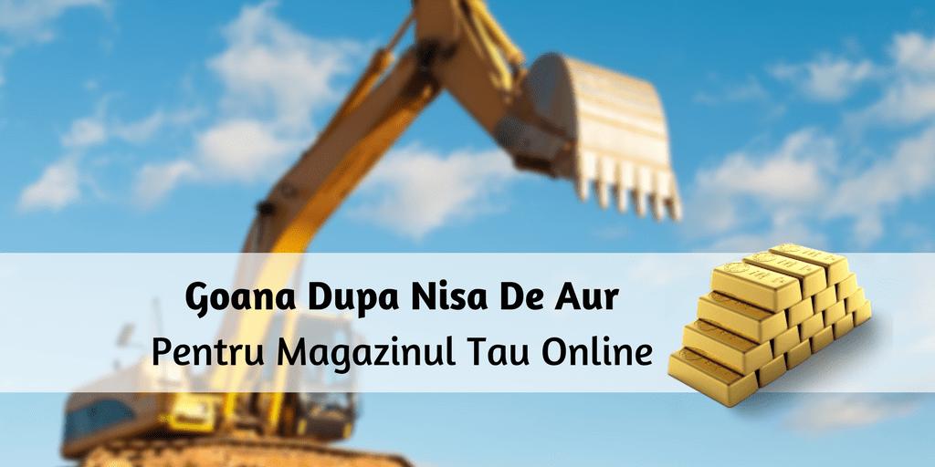 Goana Dupa Nisa De Aur Pentru Magazinul Tau Online