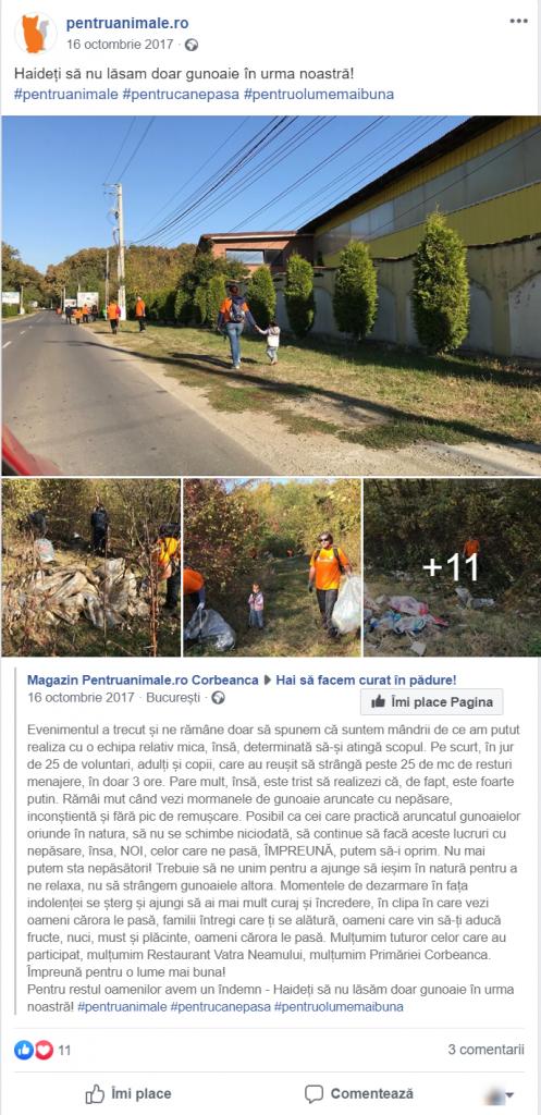 voluntariat-magazin-online