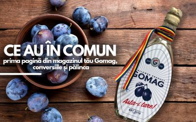 Ce au in comun prima pagina din magazinul tau Gomag, conversiile si palinca